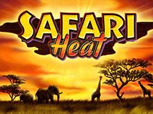 Игровые автоматы Safari Heat играть бесплатно