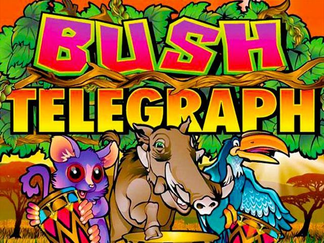 Bush Telegraph – яркий и популярный игровой автомат от Microgaming